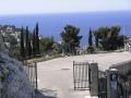 Typische-Mittelmeervegetation-in-Marseille.jpg