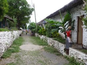 P1040150 - entlang der Rua da Banana
