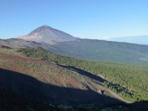 P1040223 - Der Teide (3718 m)